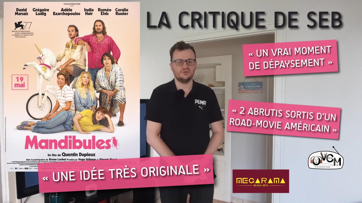Chronique ciné Mandibules